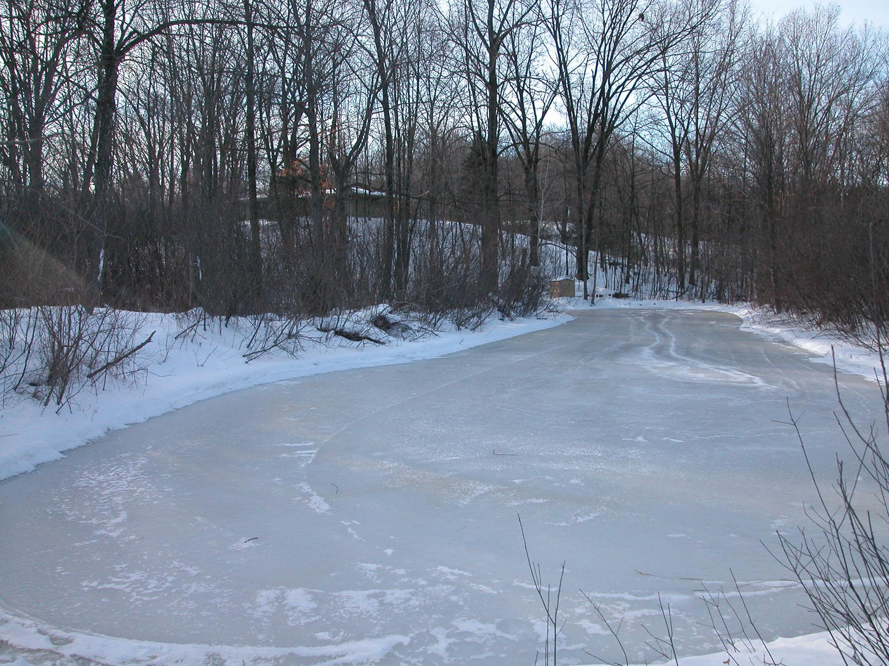 December 2010 koinsurance 39 s blog for Koi pond freezing